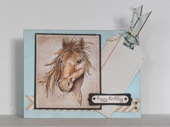 chautona-card51